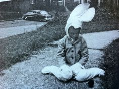 Bunny Boy from Peregrine