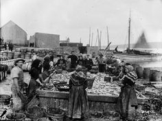 Image: Shetland Museum & Archives. Photographer: A Abernetht, 1890s. Herring station at North Ness  Spotlight on haps Louise - KnitBritish