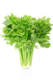 2. Celery - 25 Foods You Can Re-Grow Yourself from Kitchen Scraps