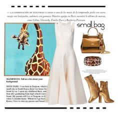 """""""Small Bag"""" by conch-lady ❤ liked on Polyvore featuring Dolce&Gabbana, Angélique de Paris, Tome and Gianvito Rossi"""
