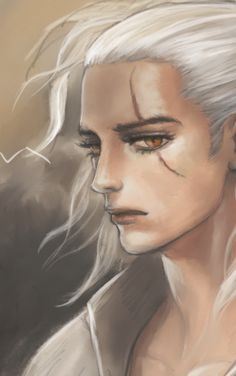 Fan art : younger handsome the witcher wild hunt