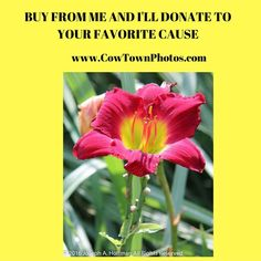 #Prints #Photos #Charity #Donate #Gift #Ideas #Home #Decor #Flowers #HelpCharity
