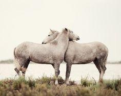Embrace, by Irene Suchocki