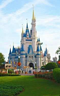 Awesome view of Disney's Castle!