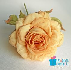 Present Perfect Creations: A large tea-coloured rose