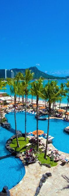 Hawaii, Oahu, Diamond Head, Sheraton Waikiki pool. As you sit in a heated pool over looking the Pacific ocean and diamond head, you frequently see turtles popping their head up and down. Great service from the people working at the Edge, serving delicious Mai Tais and island style food.