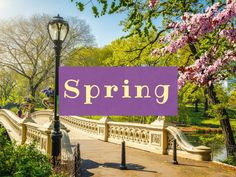 NYC in Spring- Global Storybook