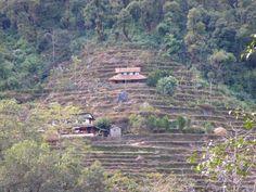 Nepal's Poon Hill Trek, Day 1: Nayapul to Ulleri - Gypsy Giraffe
