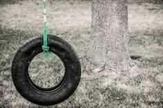Black And White With Color Tire Swing Hanging by RedHedgePhotos, $9.99