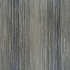 Unique Gifts, Decor, Wallpaper for Home - Gifted Parrot Rain Wallpapers, Wall Borders, Home Wallpaper, Gifts For Pet Lovers, Unusual Gifts, Neutral Colors, Colours, Black Stripes, Design