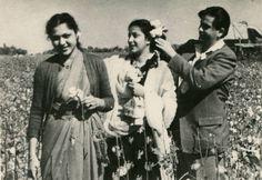 "raj-aur-nargis: "" Raj Kapoor and Nargis with Nirupa Roy in a cotton field in Uzbekistan, 1954. """