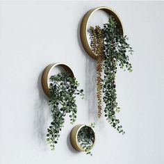 Creative Wall Hanging Metal Iron Planter Round Vase for Home Garden Living Room Decoration Crafts Artificial Flower Holder Plant Pots Metal Wall Planters, Diy Wall Planter, Concrete Planters, Motif Art Deco, Hanging Terrarium, Wall Terrarium, Terrarium Ideas, Walled Garden, Flower Holder