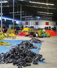 A look at what it's really like inside one of the new Chinese-owned factories in Tanzania, as China ramps up investment in Africa.