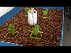 Preparing Barrels for Grow Beds - An easy cutting method - YouTube