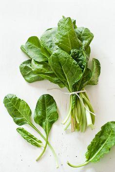 Fresh leaf spinach on a white background