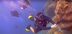 Pub Crawl, Beach Bars, Koh Tao, Marine Life, Snorkeling, Scuba Diving, Southeast Asia, Sailing, Sunrise