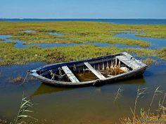 carrasqueira barco morto