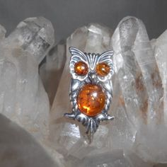 The Wisdom of Owls! This Cute Sterling Silver Owl Pin has Natural Baltic Poland Amber.