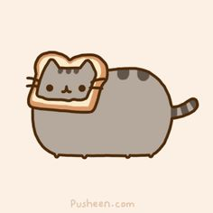 Cat breading, animated gif, via Sean Bonner.