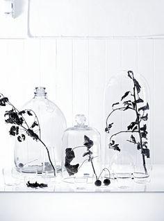 close up glassware