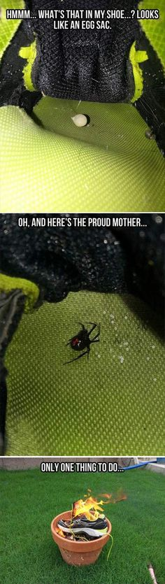 Nothing better than enjoying the heat given off by a burning spider family :)