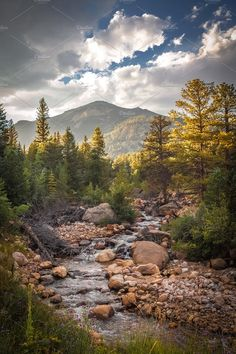 Rocky Mountain National Park, CO by Barbara Stanaitis on @creativemarket