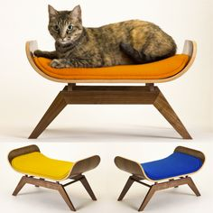 this mid century modern cat lounge is constructed of a bent walnut plywood shell with a removable upholstered cushion and solid walnut boy pet girl love  bamboo pet hammock at 1 of the family pet boutique  u0026 spa      rh   pinterest