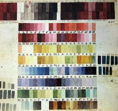 Colour chart used by Austrian botanical illustrator Ferdinand Bauer (1760-1826) for his field observations. His technique was to sketch a 'painting-by-numbers' in situ, which we he could later add colour to after returning from whichever botanical expedition he was on.