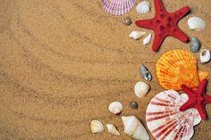 design Free Realistic Photo DOWNLOAD (.jpg) :: http://vector-graphics.ovh/photo-cat-design-0-freeid-1351559i.html ... sea, sand, coast ... design Photo Graphic Print Obejct Business Web Elements Illustration Design Templates ... DOWNLOAD :: http://vector-graphics.ovh/photo-cat-design-0-freeid-1351559i.html