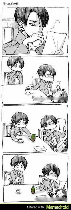 Poor Rivaille