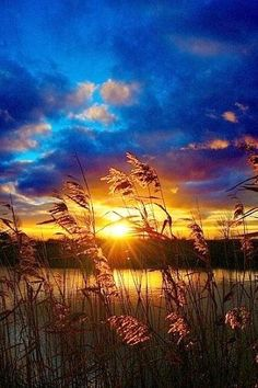 """""""grassland sunset"""" From the rising of the sun unto the going down of the same the LORD'S name is to be praised.Psalm 113:3"""