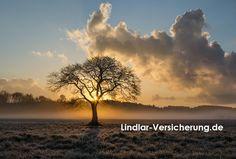 Refresh unserer Homepage + neue Domain:  http://www.lindlar-versicherung.de  #Versicherung #Lindlar #Arend #Provinzial #Vergleich