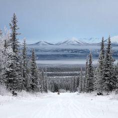 December in Alaska