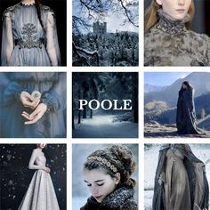 House Poole, sworn to Stark. House Poole is a noble house from the north. It is sworn to House Stark. They blazon their arms as a blue plate on white, with a grey tressure.
