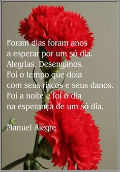 A beautiful poem that remembers April 74 History Of Portugal, 25 Avril, Poems Beautiful, Lisbon Portugal, Carnations, Dandelion, Diy And Crafts, Sculptures, Cool Stuff