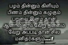 Tamil Motivational Quotes, Inspirational Quotes, Reality Quotes, Success Quotes, Hurt Quotes, Me Quotes, Swami Vivekananda Quotes, Krishna Quotes, Quotes About God