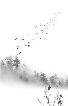 Birds in the Mist by Greg Waters