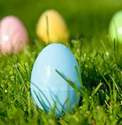 5 Easter Egg Hunt Ideas