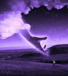 Beautiful, Funny, Cute and Unusual Pictures Purple Rooms, Purple Art, Purple Love, All Things Purple, Shades Of Purple, Pink Purple, Purple Stuff, Cool Photos, Beautiful Pictures