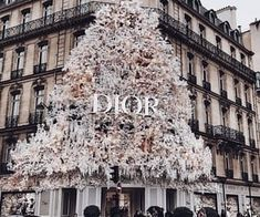 Fashion, wallpapers, quotes, celebrities and so much Cute Wallpaper Backgrounds, Cute Wallpapers, Aesthetic Backgrounds, Aesthetic Wallpapers, Chica Cool, Muslim Women Fashion, Gold Aesthetic, We Are The World, Cute Couples