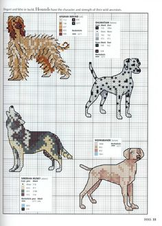 Gallery.ru / Photo # 31 - Picture Your Pet in Cross Stitch - patrizia61