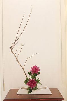 Material: Galho de amora e anastácia. Material: Blackberry branch and chrysanthemum.