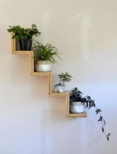 Do you need inspiration to make some DIY House Plants Decor in your Home? Some plants appear to entice more pests than others. Just about all of my plants are succulents of some sort. It's possible to use pots with… Continue Reading → House Plants Decor, Plant Decor, Bedroom With Plants, Plant Shelves, Display Shelves, Step Shelves, Wall Shelves Design, Small Shelves, Display Ideas