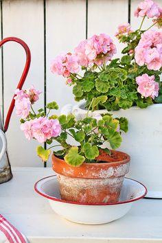 VIBEKE DESIGN: Reuse joy in the garden!