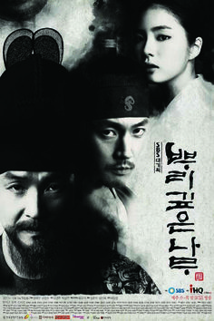 Tree with Deep Roots 24 episodes: male leads Han Suk Kyo and Jang Hyuk / female lead Shin Se Kyung Shin Se Kyung, Chiba, Roots Tv Series, Deep Rooted Tree, Drama Tv Series, Korean Drama Movies, Korean Dramas, Ugly Cry, Secret Power