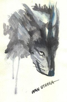 lobo en acuarela
