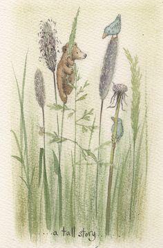 Gallery - Fran Evans Illustration