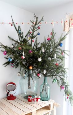 alternative Christmas trees - evergreen boughs in large jars