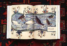bestiari del medioevo uccelli -- vedi blog---