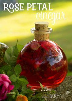 Rose Petal Vinegar + 7 Ways to Use It Beautiful Rose Petal Vinegar Recipe + 7 Ways to Use It Potpourri, Diy Rose, Fresh Rose Petals, Infused Oils, Flower Food, Edible Flowers, Back To Nature, Herbal Medicine, Herbal Remedies